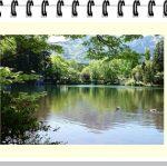 湯布院の「金鱗湖」周辺は温泉とランチにティータイムもできる散策エリア